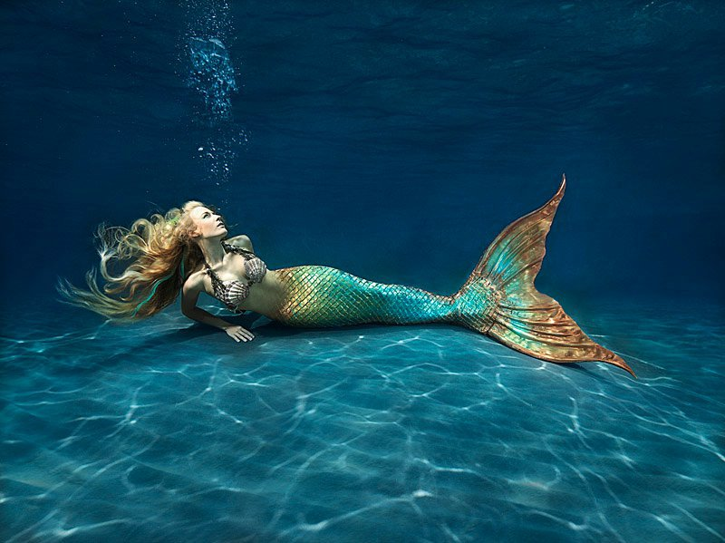 Mermaid-mermaids-31406392-800-599