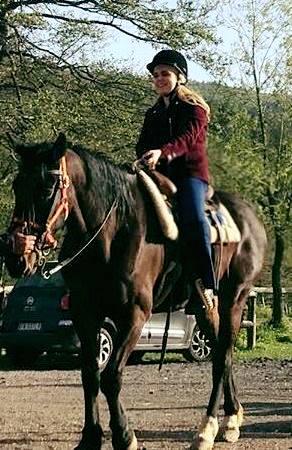cavallofilter